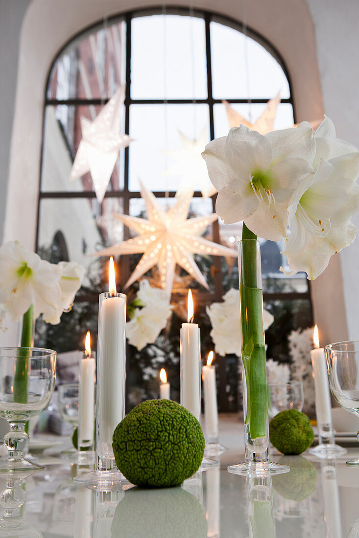 Table decorated for Christmas with amaryllis and candles