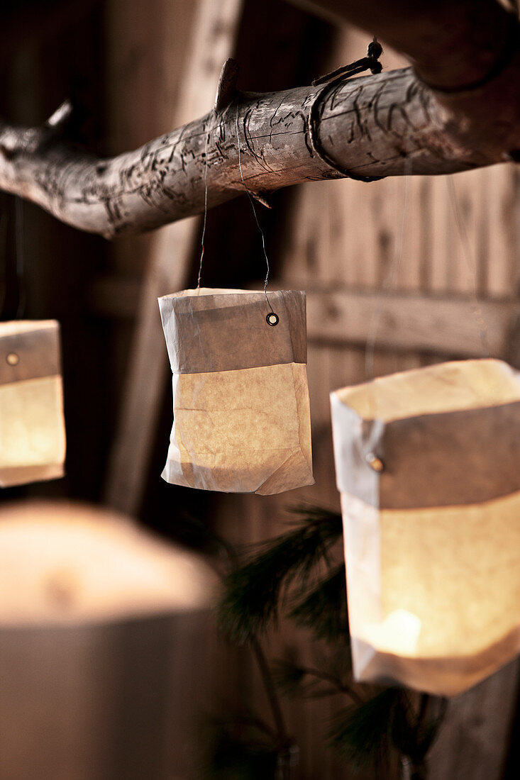 Small paper candle lanterns hung from branch