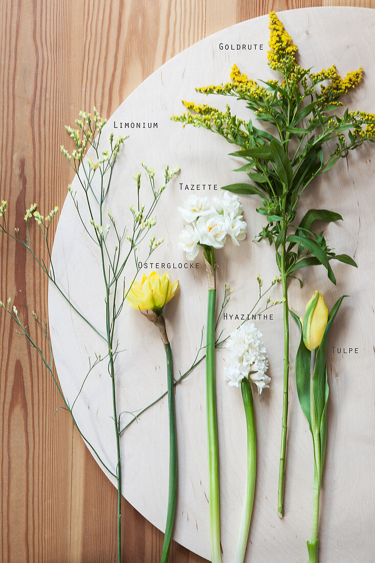 Flowers for spring floristry: tulips, daffodils, hyacinths, goldenrod, and sea lavender