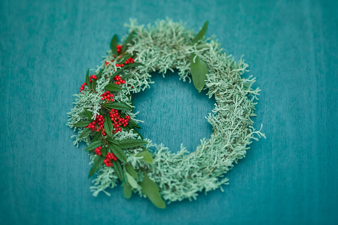 Wreath of Santolina and Cotoneaster with berries