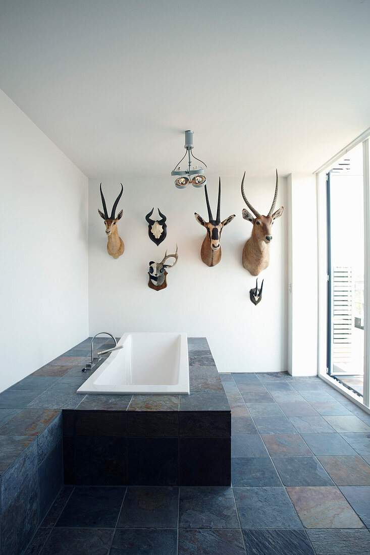 Hunting trophies in bathroom