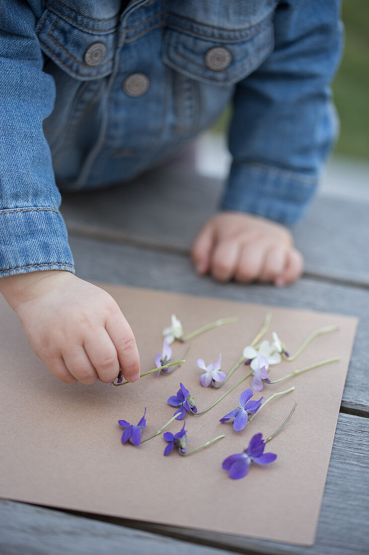 A girl playing with violet flowers