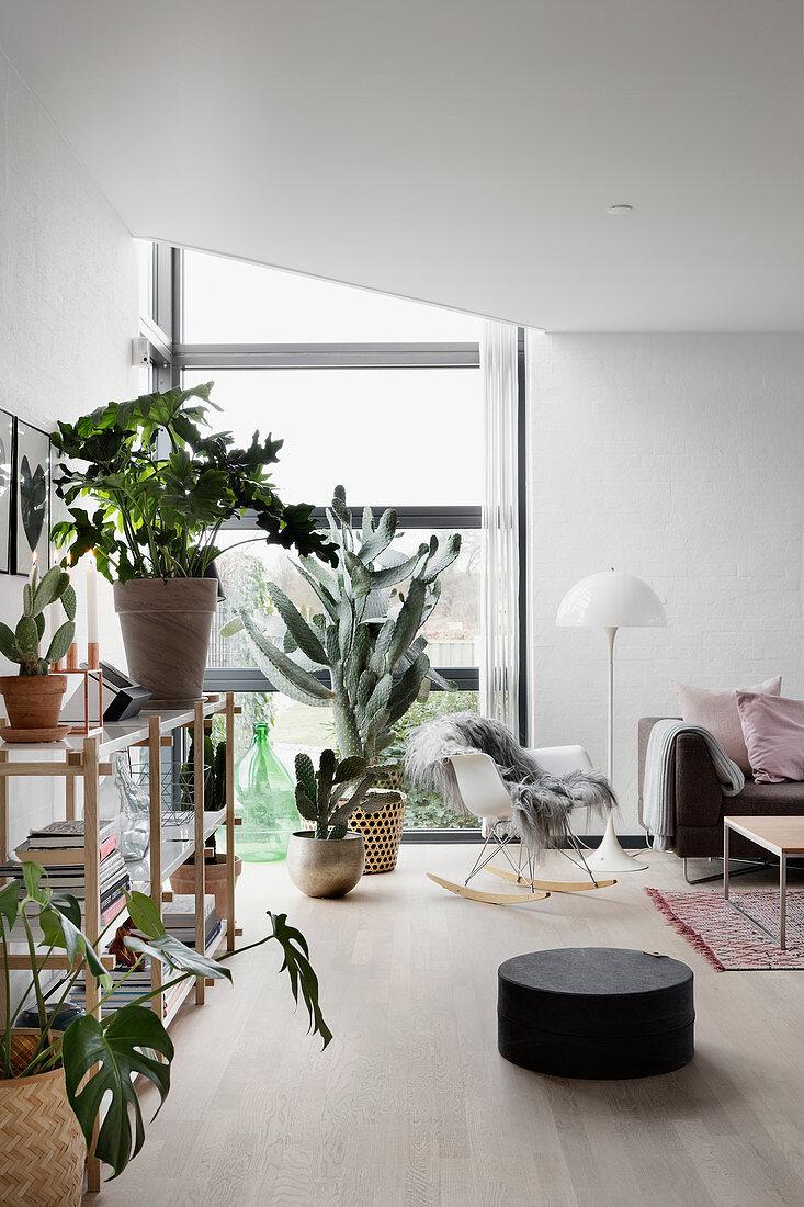 Houseplants in modern living room with corner window