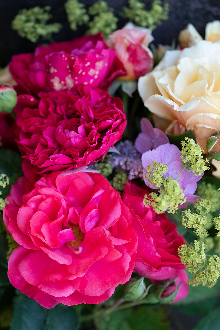 Bouquet of roses, lady's mantel and hydrangeas