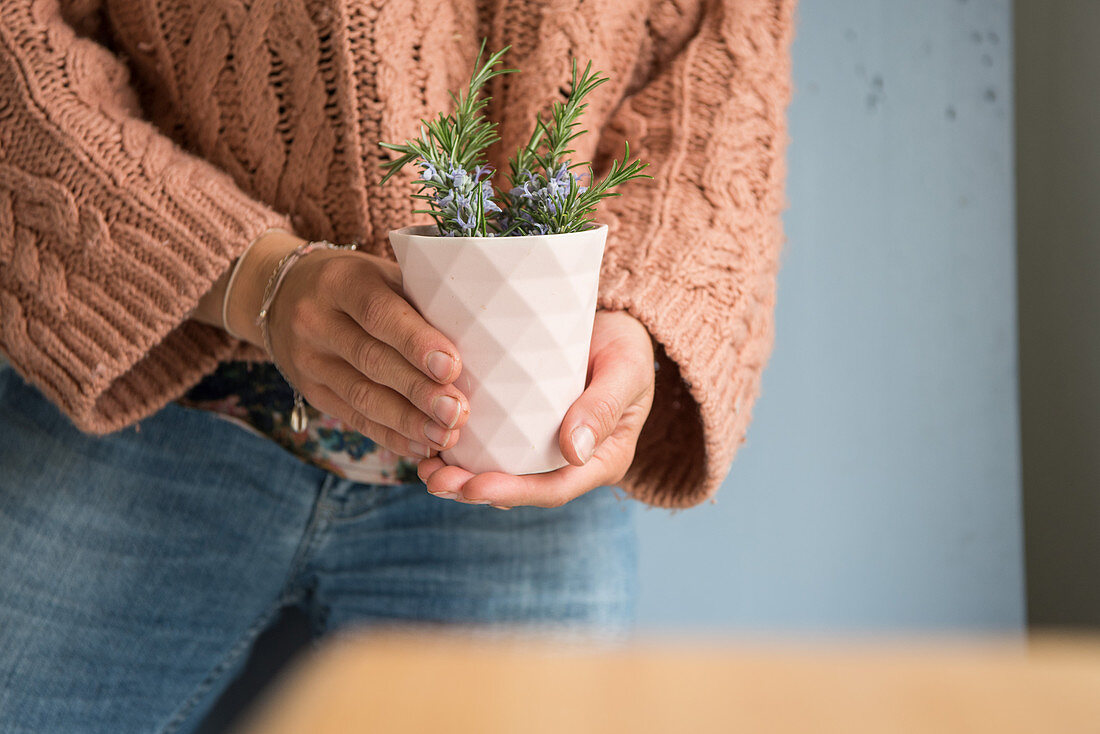 Woman holds mug with blossoming rosemary branches