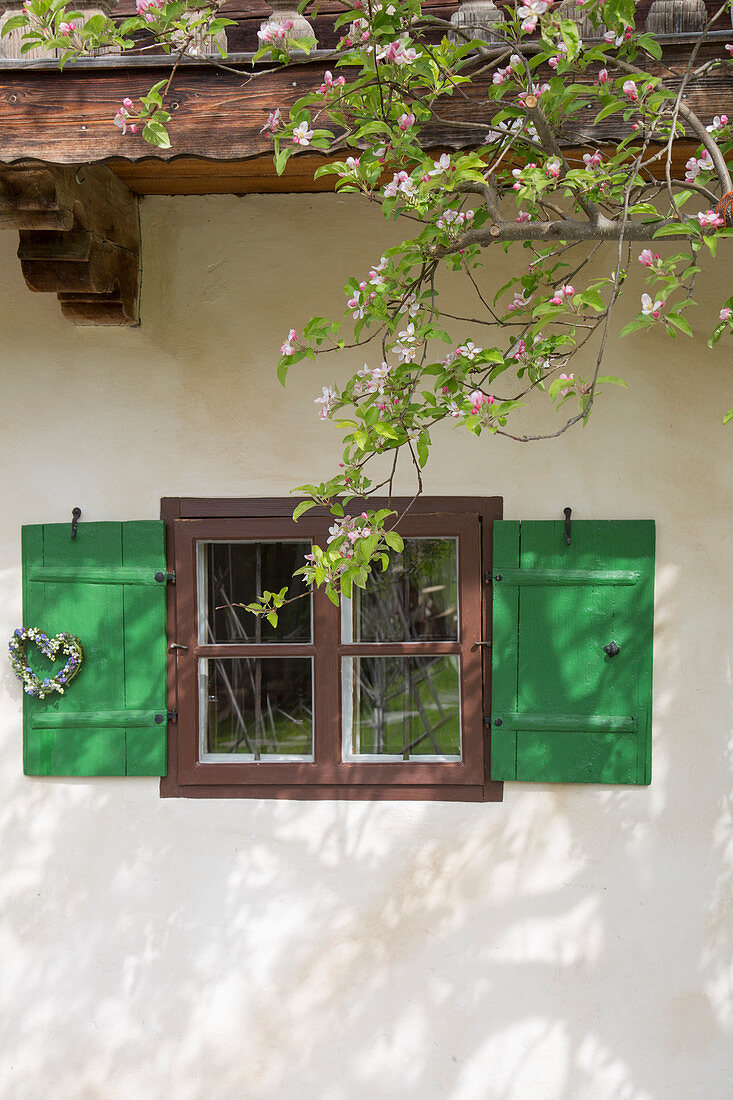 Apple blossom in front of window with heart-shaped wreath of lily-of-the-valley and forget-me-nots on shutter