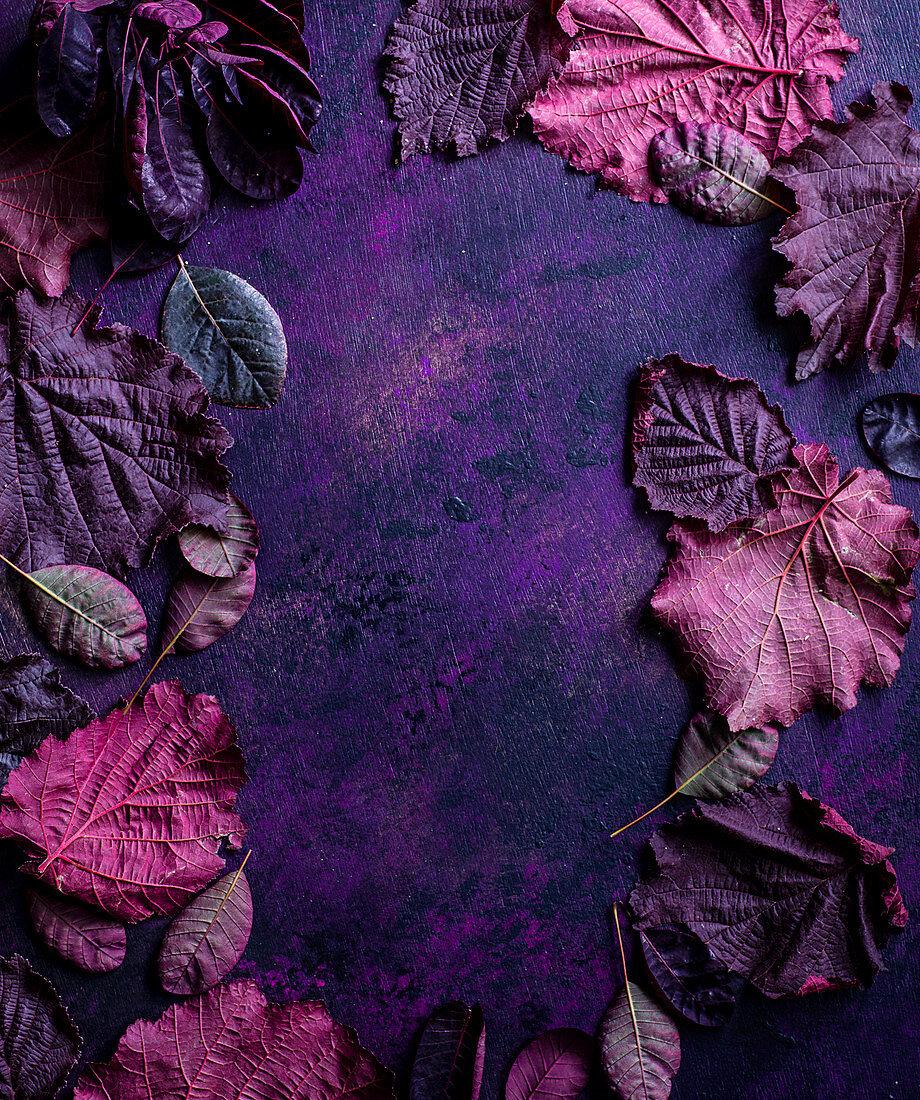 Frame of purple leaves on purple surface