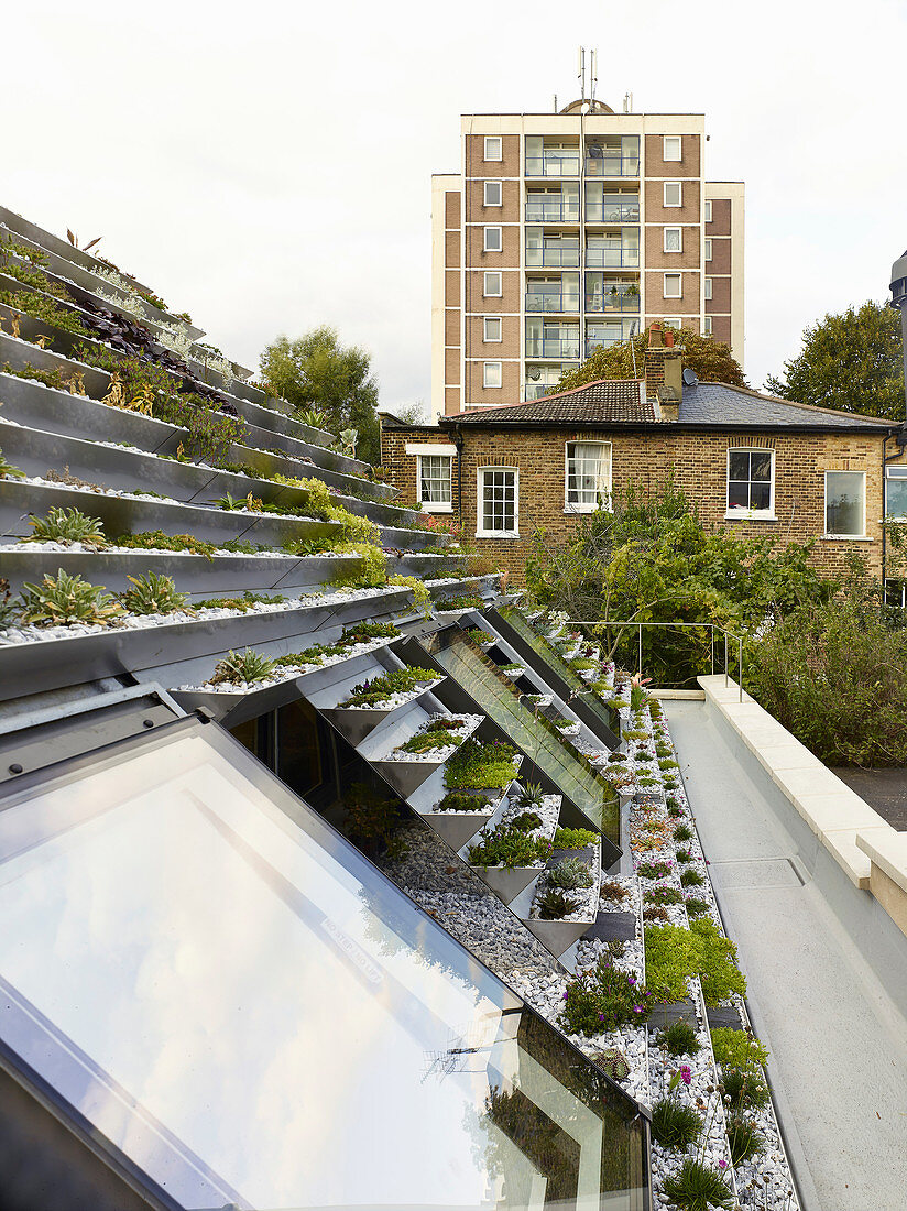 View across terraced roof garden