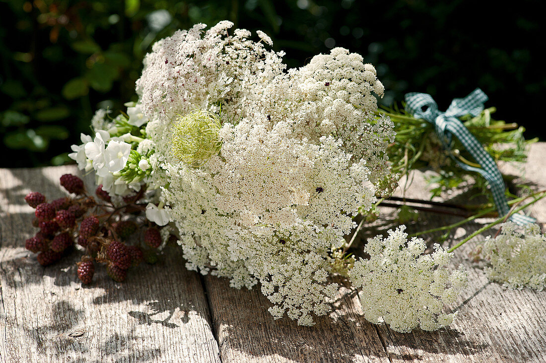 Bouquet of Queen Anne's lace, phlox and unripe blackberries