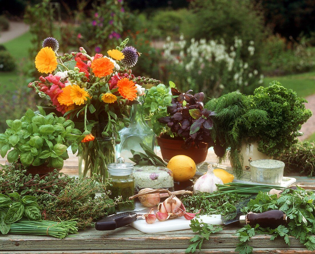 Still life with ingredients for herb dishes