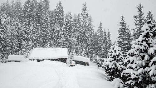 Snow-covered Alpine cabin surrounded by trees
