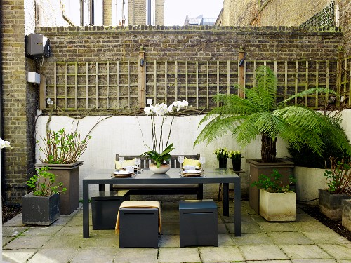 Seating area in sheltered courtyard with brick wall; elegant, grey stools around table amongst potted plants