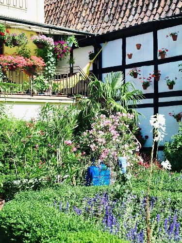 Half-timbered house with veranda & summery garden