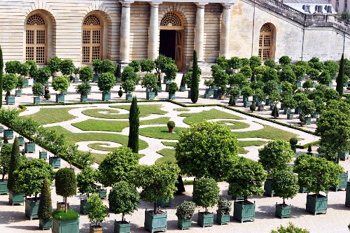 A view of the Orangerie (Palace of Versailles)