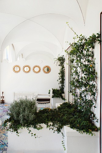 Small, round mirrors on wall above seating in cross-vaulted loggia; masonry raised beds with trellis in foreground