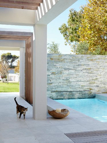 Contemporary house with roofed terrace and pool in patio-style courtyard
