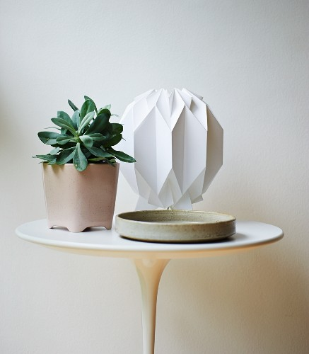 Potted plant and table lamp on small Tulip side table