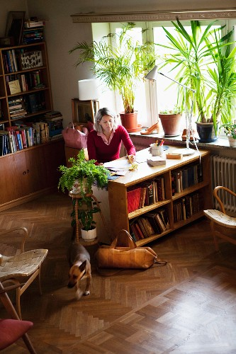View of woman sitting at desk on top of shelves and house plants on windowsill