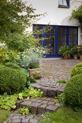 View from garden with steps leading to cobbled terrace and house with blue window frames