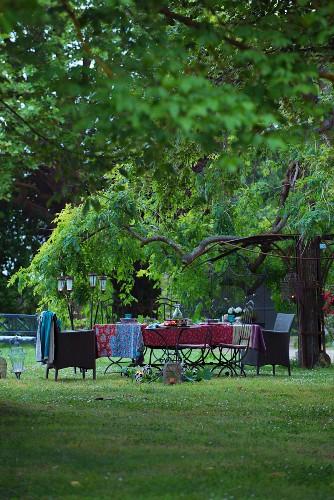 Set table below chestnut tree in garden