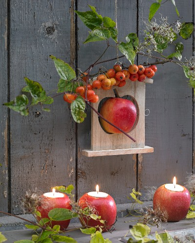 Autumn arrangement of apples
