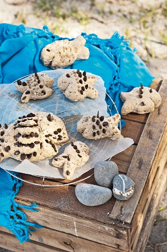 Home-made bread fishes with pumpkin seeds for beach picnic