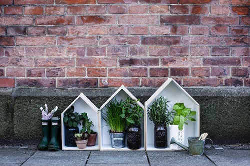 Herb plants in small, decorative wooden houses against brick wall