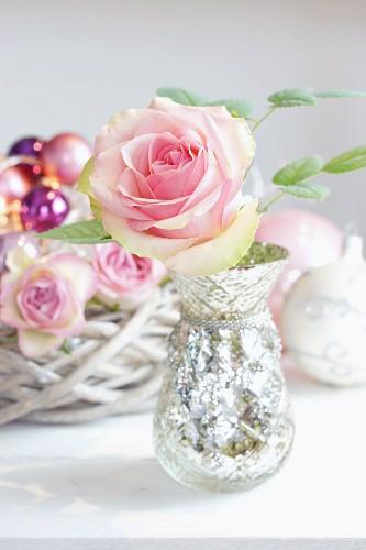 Pale rose in mercury silver vase