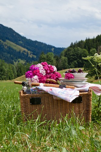 Sweet Williams and crockery on top of picnic basket in summery mountain landscape