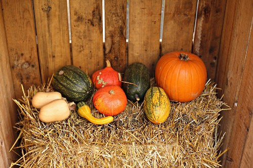 Various pumpkins on bale of straw in wooden crate