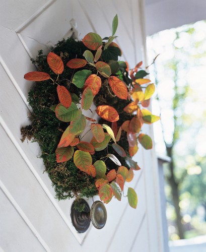 Wreath of moss and autumn leaves on open front door