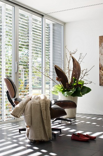 Sunny interior with large arrangement of plants in tall floor vase; sheepskin coat lying over comfortable Eames lounge chair in foreground