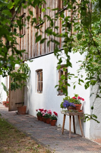 Renovated farmhouse with wood-clad façade and potted flowering geraniums