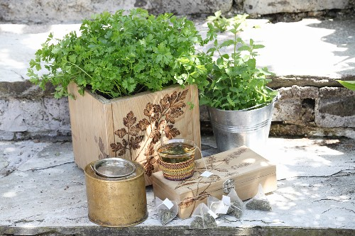 Kitchen herbs in wooden crate with pokerwork motif