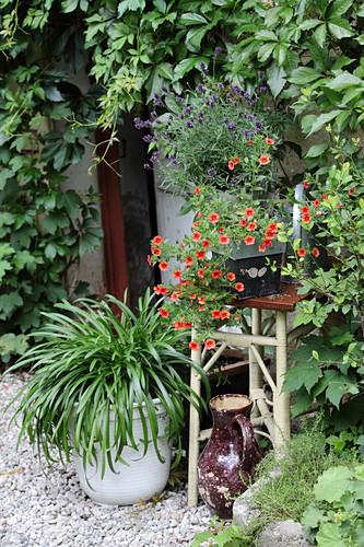 Plant stand next to front door