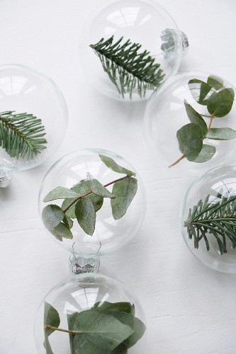 Blätter- und Tannenzweige in Glaskugeln