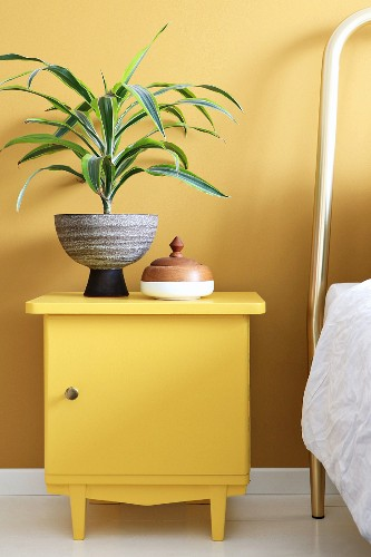 Yucca in retro pot on bedside cabinet painted yellow