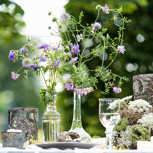 Delicate wildflowers in shades of purple in glass vases on set garden table