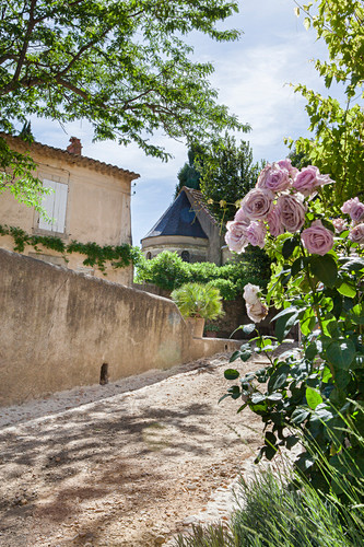 Old Mediterranean house with roses, lavender and box in front garden
