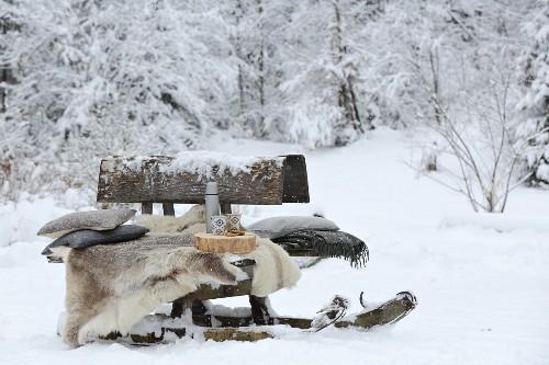 Old toboggan used as bench in snowy garden