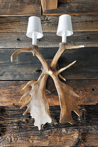 Sconce lamp made from antlers on rustic wooden wall