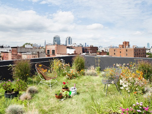 Green roof with flowers, chairs and views of Brooklyn and Manhattan