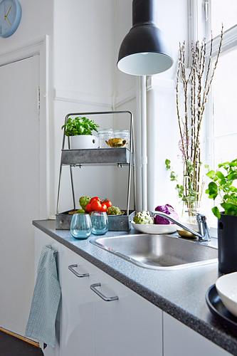 Küchenzeile mit Spülbecken vor Fenster, Gemüse und Kräutertopf auf der Arbeitsfläche