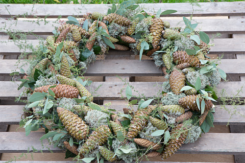 Wreath of Eucalyptus populus and various cones