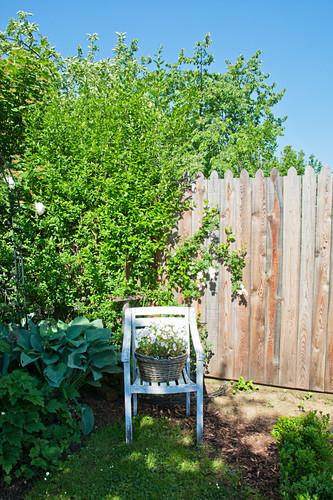 Blumen im Korb auf einem Stuhl im Garten vor dem Gartenzaun