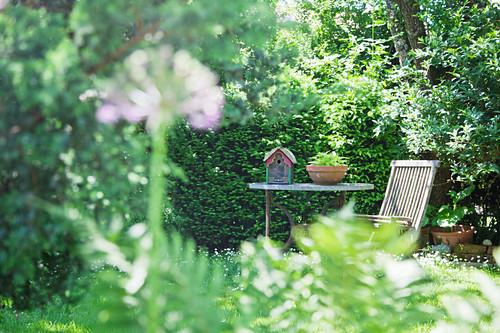 Seating area in idyllic summer garden