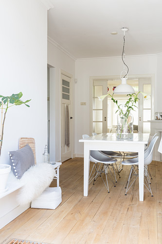 White dining table and classic chairs on wooden floor in dining area with house plant and cushions on bench in foreground