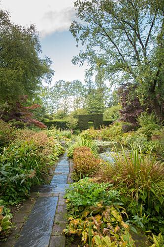 Path leading through water garden (Les Jardin de Castillon, France)