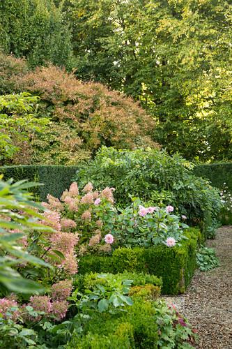 Hydrangeas and dahlias in autumnal flowerbed (Les Jardin de Castillon, France)