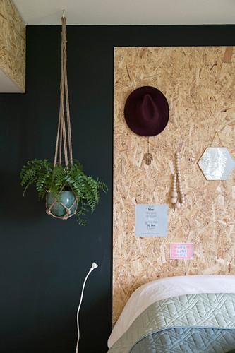 Fern in macrame hanger against black wall in bedroom